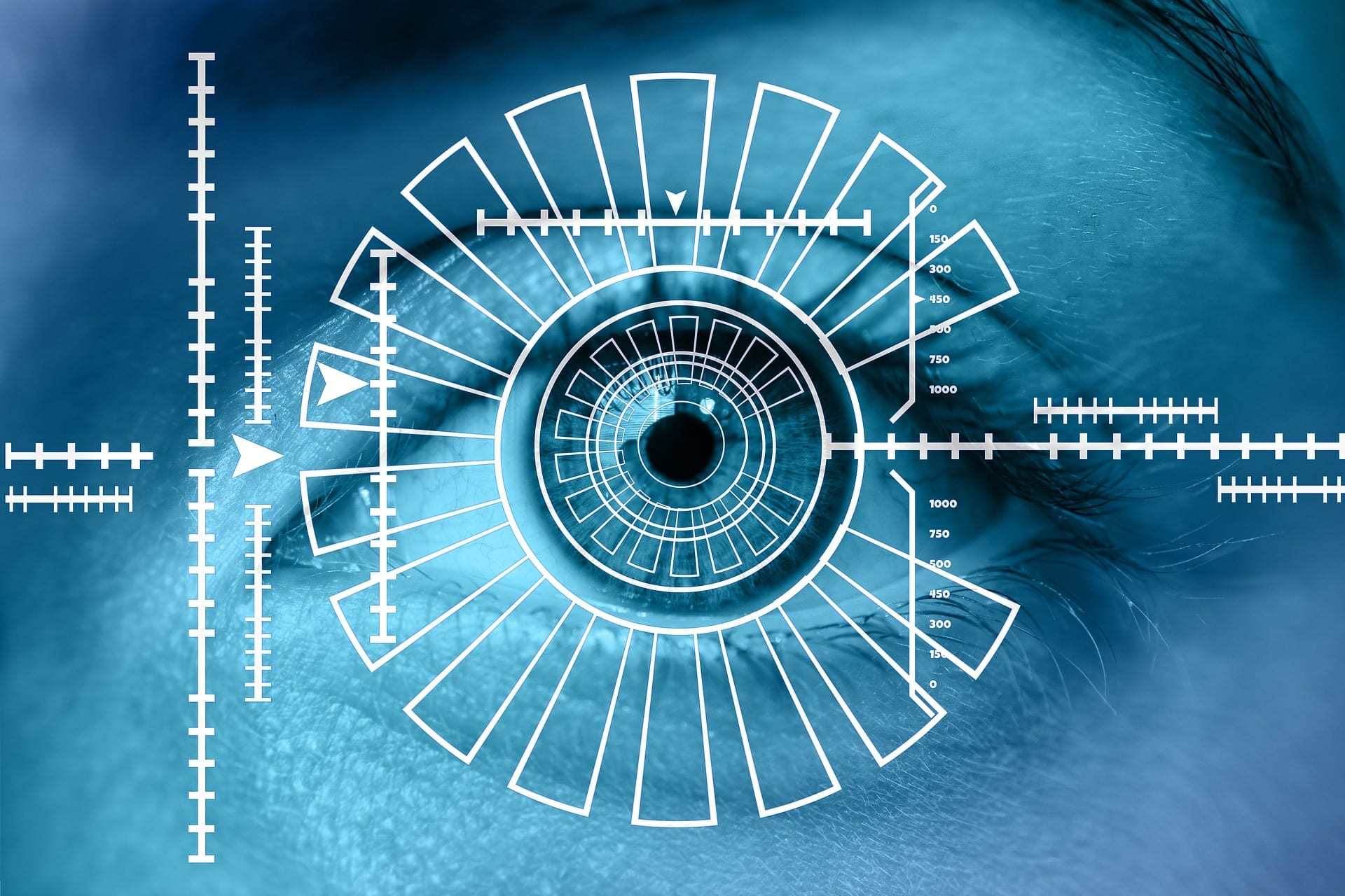 Biometric Authentication; Is the Future Password-Less?
